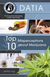 Top 10 misperceptions about marijuana brochure.